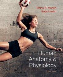 Human Anatomy & Physiology 9th Edition