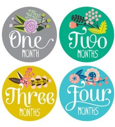 Lucy Darling Shop Baby Month Bodysuit Sticker – Baby Girl – Floral Hand Lettering – Months 1-12