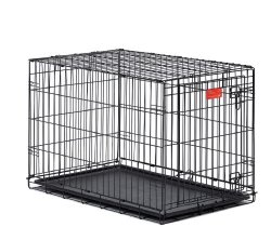 Midwest Life Stages Single-Door Folding Metal Dog Crate, 48 Inches by 30 Inches by 33 Inches