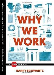 Why We Work (TED Books)