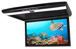 iseebiz 17.3 inch Flip Down TFT LED Monitor with USB/SD/IR/FM/HDMI