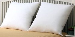 Premium- Set of 2 – 26″ x 26″ – Euro Pillow-Down Alternative – 100 GSM Shell Fabric – Exclusively for Blowout Bedding RN# 142035