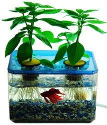 JrPonics FishGarden & BubbleGarden – Aquaponics/Hydroponics Gardening Kit for Kids – Educational Aquarium Habitat – Grow Plants with Fish!