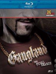 Gangland: The Final Season [Blu-ray]