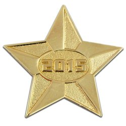2015 Gold Star Year Lapel Pin