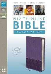 NIV, Thinline Bible, Large Print, Imitation Leather, Purple/Purple