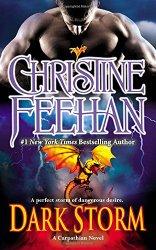 Dark Storm: A Carpathian Novel