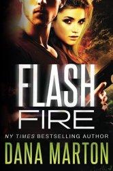 Flash Fire: (A Navy SEAL Romance)