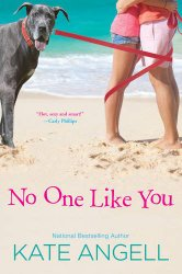 No One Like You (Barefoot William Beach)
