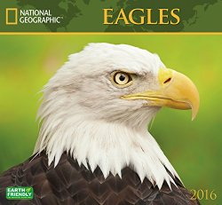 Eagles National Geographic 2016 Wall Calendar