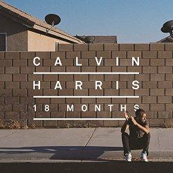 18 Months (VInyl LP)