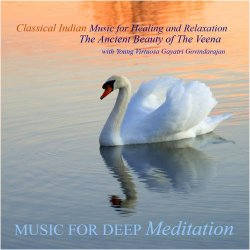 Classical Indian Music for Healing and Relaxation – The Ancient Beauty of the Veena