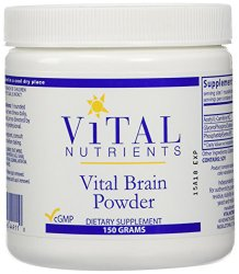 Vital Nutrients Vital Brain Powder – Supports Mental and Behavioral Health,150 Gram