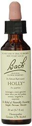 Bach Original Flower Remedies Supplement, Holly, 20 ml, 0.7 Fluid Ounce