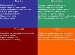 Holistic Medicine Practitioner SWOT Analysis Plus Business Plan