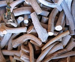 ANTLER MAN C-Grade Deer Antler Pieces – Dog Chews – Antlers By The Pound