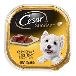 CESAR SUNRISE Grilled Steak and Eggs Flavor Breakfast Dog Food Trays (Pack of 24)