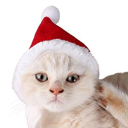Pet Leso® Cat Christmas Hat With Muffler Puppy Dog Santa Hat, Red -S