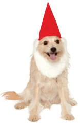 Rubies Costume Company Garden Gnome Hat with Beard for Hats, Medium/Large