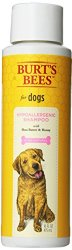 Burts Bee Hypoallergenic Shampoo, 16-Ounce