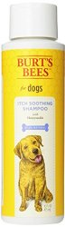Burts Bee Itch Soothing Shampoo, 16-Ounce