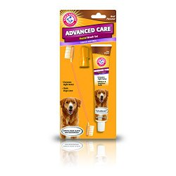 Arm and Hammer Advanced Care Tartar Control Toothpaste, Toothbrush and Finger Toothbrush Set for Dogs