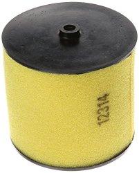 Honda 17254-HN5-670 Air Filter