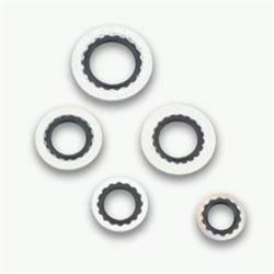 Earls 178004ERL Stat-O-Seal 0.25″ O-Ring, (Pack of 2)