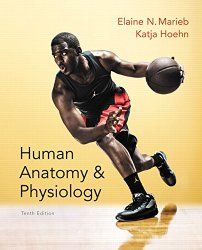 Human Anatomy & Physiology Plus MasteringA&P with eText — Access Card Package (10th Edition)