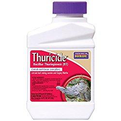 Bonide 803 Thuricide BT Insect Killer, 16-Ounce
