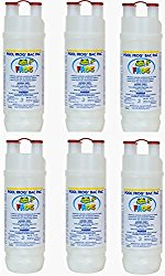 Pool Frog Mineral Purifier Replacement Chlorine Bac Pac – 6 Pack