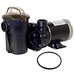 Hayward SP1580X15 Power-Flo LX Series 1-1/2-Horsepower Above-Ground Pool Pump with Cord and Replacement Lid O-Ring – 2 Item Bundle