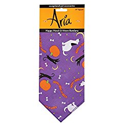 Aria Happy Howl-O-Ween Bandanas for Dogs, Purple