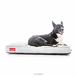 BRINDLE Soft Memory Foam Dog Bed with Removable Washable Cover – 34in x 22in – Stone