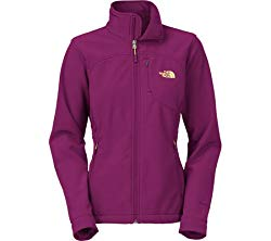 The North Face Women's Apex Bionic Jacket, Pamplona Purple, Medium