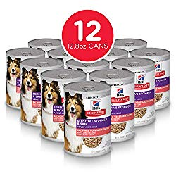 Hill's Science Diet Wet Dog Food, Adult, Sensitive Stomach & Skin, Salmon & Vegetable Recipe, 12.8 oz, 12-pack