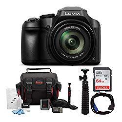 Panasonic LUMIX FZ80 4K Long Zoom Camera (18.1 Megapixels, 60X 20-1200mm Lens) + 64GB Accessory Bundle