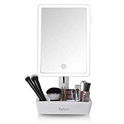 Fancii LED Lighted Large Vanity Makeup Mirror with 10X Magnifying Mirror – Dimmable Natural Light, Touch Screen, Dual Power, Adjustable Stand with Cosmetic Organizer – Gala